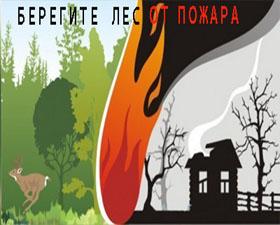Памятка по предотвращению лесных пожаров